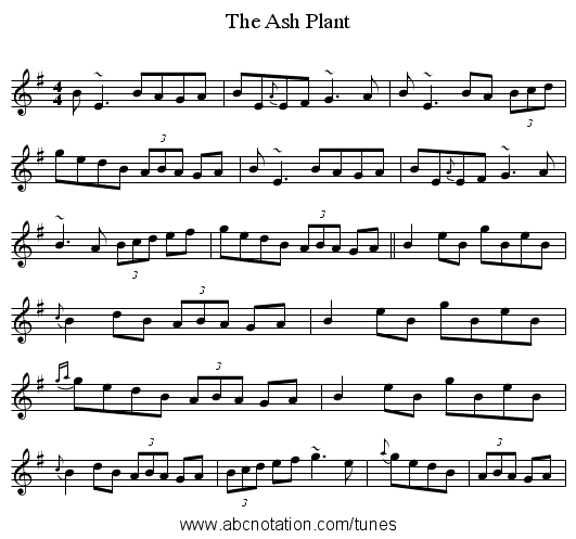 Ash Plant, The - staff notation