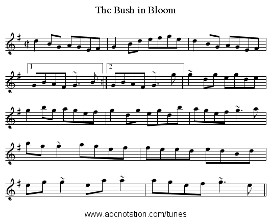 Bush in Bloom, The - staff notation