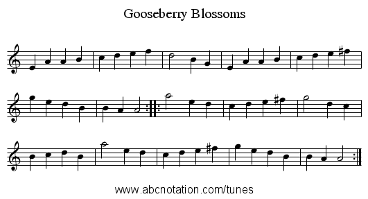 Gooseberry Blossoms - staff notation