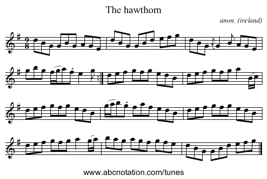 The hawthorn - staff notation